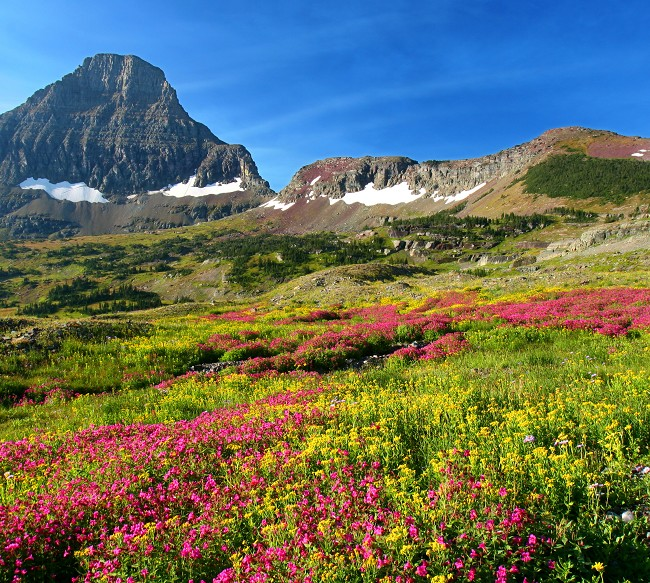 Glacier National Parks Image